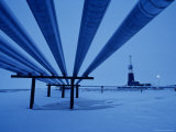 View Underneath Alaska Pipeline