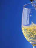 Sparkling Wine Effervescing as It is Poured into a Glass