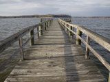 Weathered Pier Leads to the Chesapeake Bay