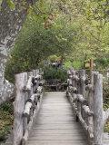 Wooden Bridge at el Capitan Ranch  California