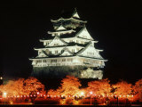 Night View of Osaka Castle with Cherry Blossoms  Japan