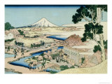 36 Views of Mount Fuji  no 44: The Tea Plantation of Katakura in the Suruga Province