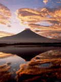Mt Fuji and Lake Tanuki