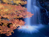 Waterfalls and Autumn Leaves