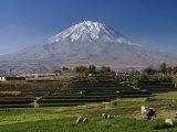 El Misti Volcano and Arequipa Town  Peru