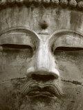 Great Buddha Statue  Kamakura  Daibutsu  Kanto  Japan