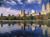 Central Park  New York City  Ny  USA