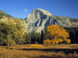Half Dome  Yosemite Np  California  USA