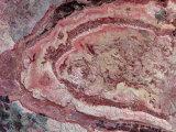 Spider Crater  Western Australia