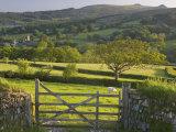 Sheepstor  Dartmoor  Devon  England