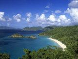 Trunk Bay  St John  Us Virgin Islands  Caribbean