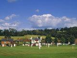 Cricket on Village Green  Surrey  England