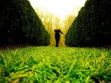 Walking through Garden Maze