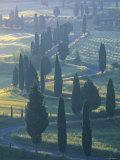 Winding Road  Monticchiello  Tuscany  Italy