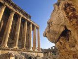 Temple of Bacchus  Baalbek  Bekaa Valley  Lebanon