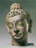 Gandharan Style Lime Plaster Buddha  4th Century