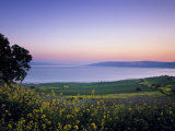 Sea of Galilee, Israel Papier Photo par Jon Arnold