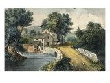 The Roadside Mill
