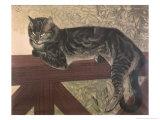 Cat on Balustrade Giclée par Théophile Alexandre Steinlen