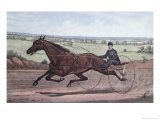 Queen of the Turf Maud S  Driven by WW Bair