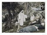 Jesus Commands His Disciples to Rest