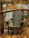 Autumn Leaves on Chair by Lake  Ontario  Canada