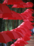 Umbrella Lights  Kunming  China