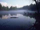 Lake Muskokas  Ontario