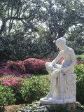 Middleton Gardens  Charleston  SC