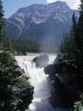 Athabasca Waterfall in Jasper National Park  Alberta  Canada