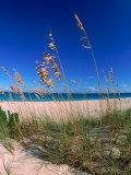 Grace Bay Beach  Turks & Caicos Islands