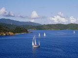 Sailboats  Coral Bay  St John  Caribbean Sea