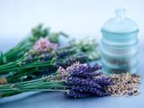 Cut Lavender  Dried Lavender & Glass Pot
