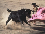 Matador with Pink Cape and Bull  Mexico