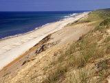 Beach  Cape Cod  MA