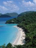 Trunk Bay  Virgin Islands National Park  St John
