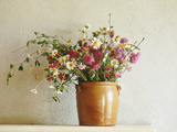 Summer Arrangement of Wild Flowers in Glazed Jar Against Whitewashed Wall