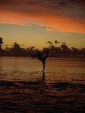 Woman Doing Yoga in Water at Sunset  Tahiti