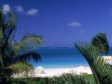 Tropical Beach  Turks and Caicos Islands