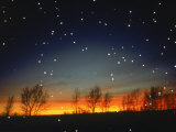 Silhouetted Landscape Below Star-Filled Sky