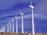 Rows of Wind Powered Generators  Mojave  CA