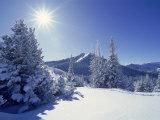 Sunlight on Fresh Snow  Wasatch Mt Range  UT