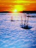 Catskills  Ny  Snow Sunset