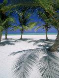 Playa Juanillo  Dominican Republic