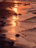 Sunset  Stanhope Beach  Pei  Canada