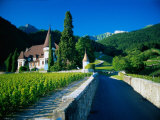 Vineyards and Chateau  Montreux  Switzerland