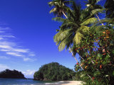 Paria Beach  Trinidad