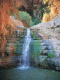 Shulamit Fall at En Gedi Reserve  Israel