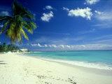 Beach Scene  Barbados