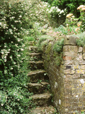 Stone Steps  Beside Old Brick Wall